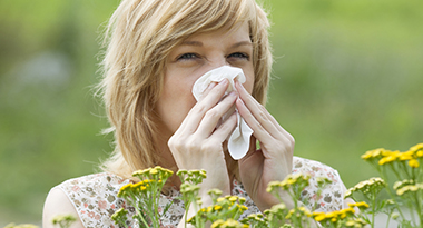 Comment lutter contre les allergies
