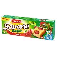 savane_jungle